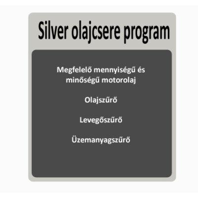 Silver olajcsere program